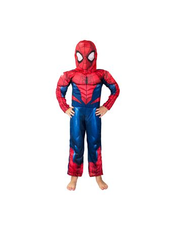 spiderman-hc