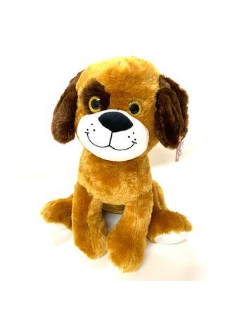 1602-perro