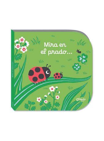 MIRA-EL-PRADO4